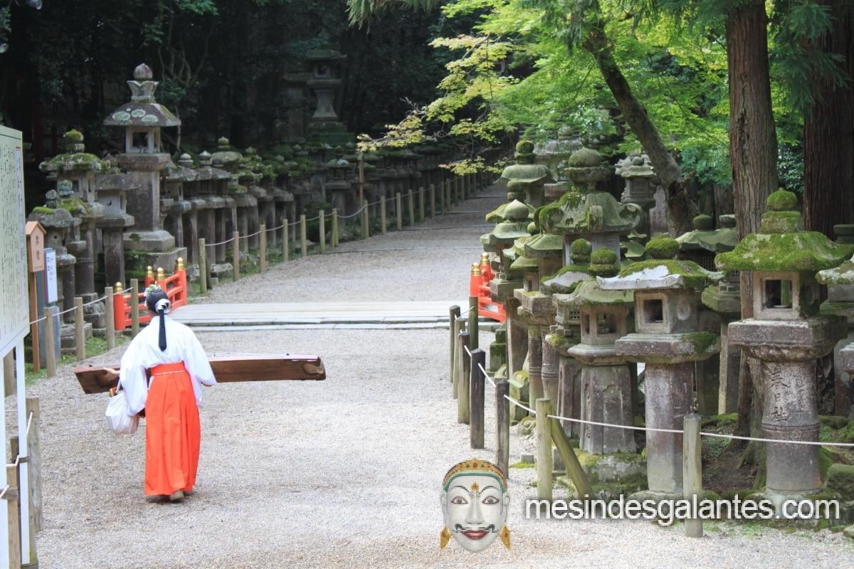 Kyoto Nara Japon Mes Indes Galantes