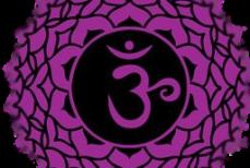 Sahasrara-septième chakra