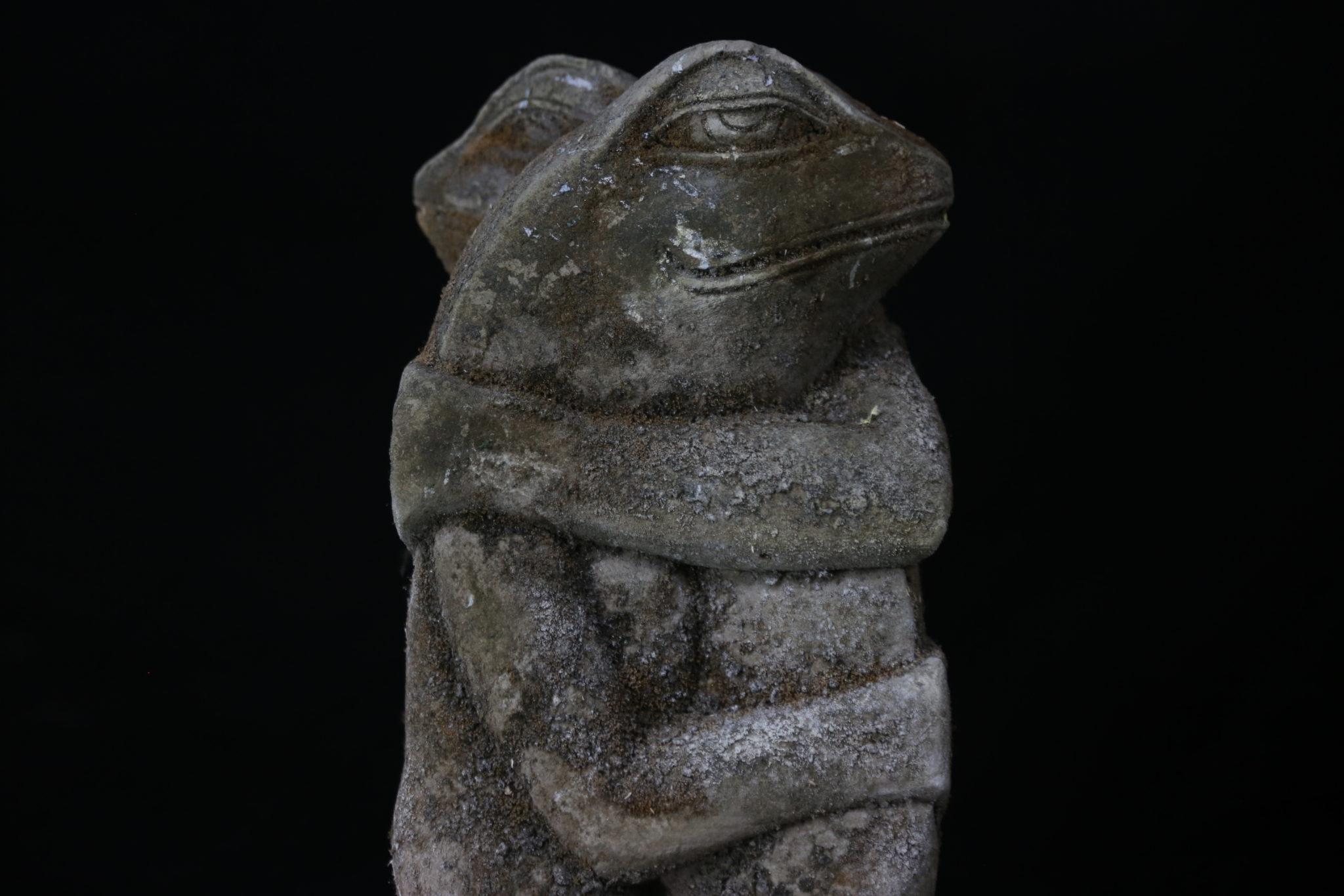 grenouille bali