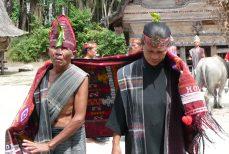 Cultures et Art Tribal de Sumatra