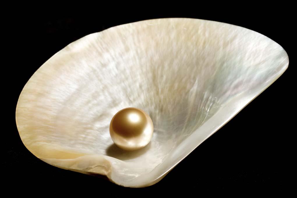Perle - Mes Indes Galantes - Lithothérapie