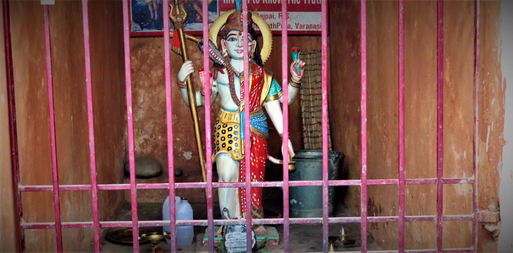 Ardhanari protection transsexuel