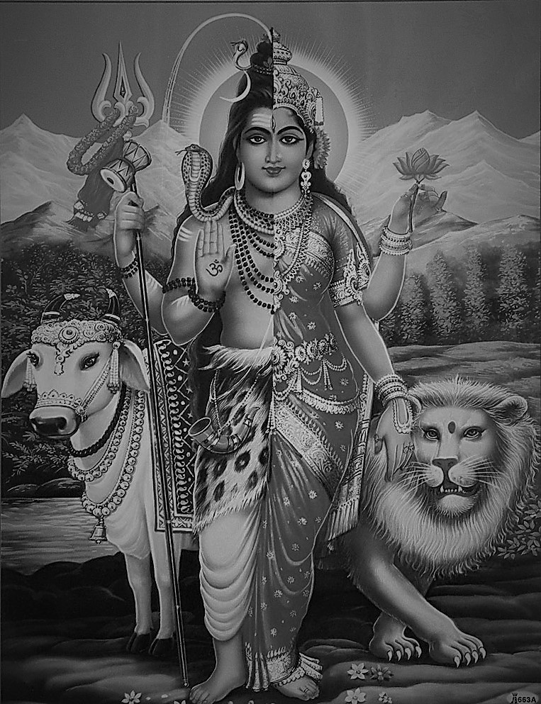 Ardhanarishvara dieu transgenre