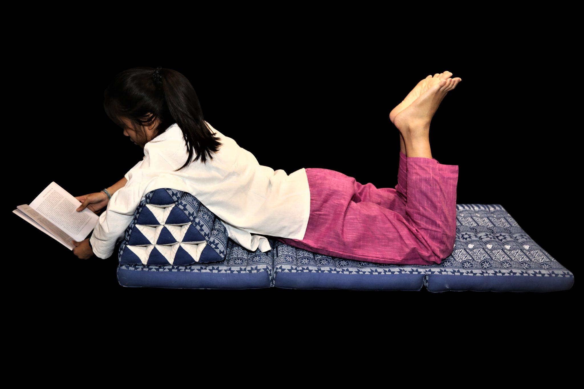 futon lit appoint