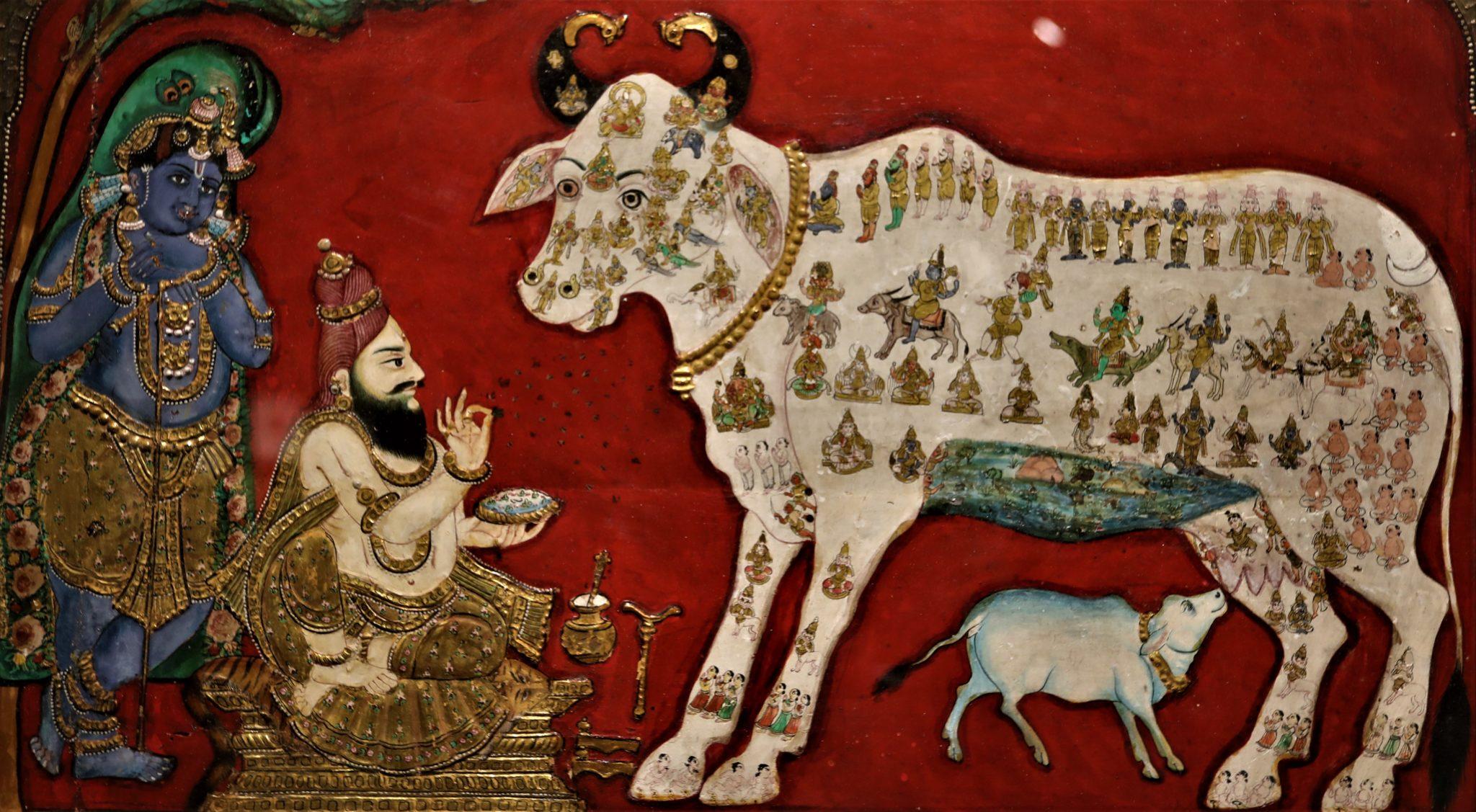nandi vache sacrée