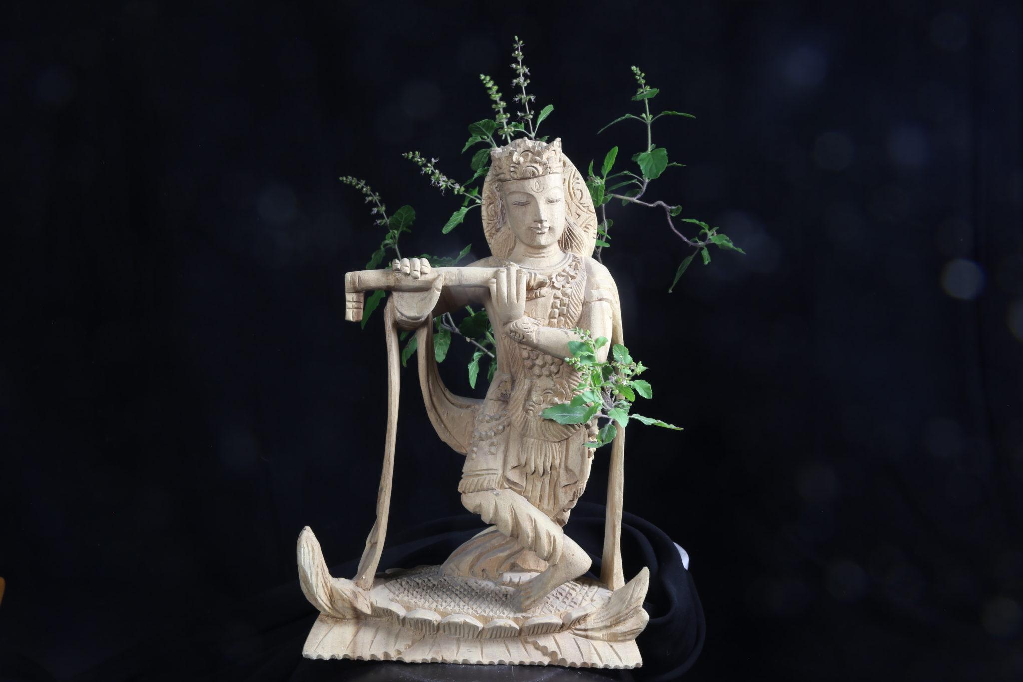 Krishna Tulsi Basilic Mes Indes Galantes Ayurveda Vishnu