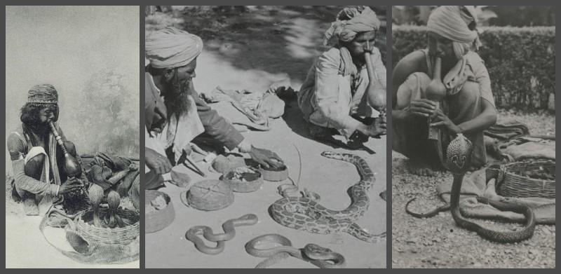 SERPENT INDE SHIVA VISHNU ACHAT MES INDES GALANTES