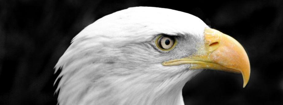 lithothérapie pierre œil d'aigle