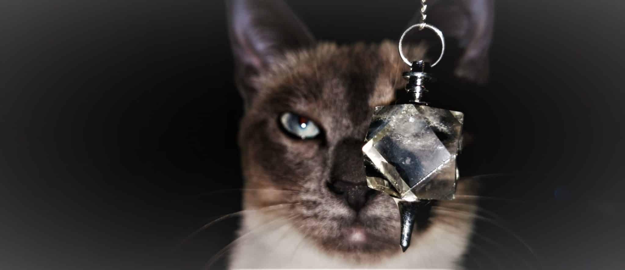 Le pendule Divination Signification Radiesthésie Mes Indes Galantes Blog