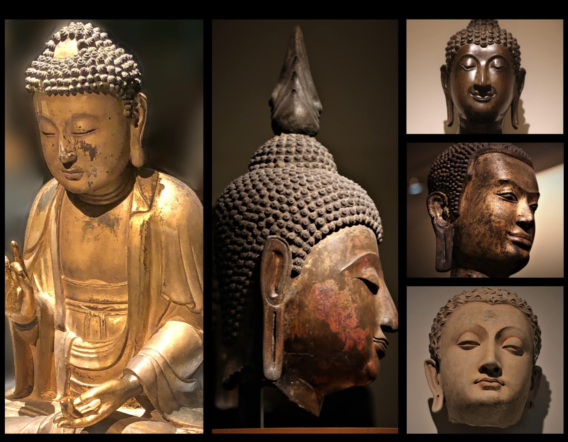 oreille de bouddha