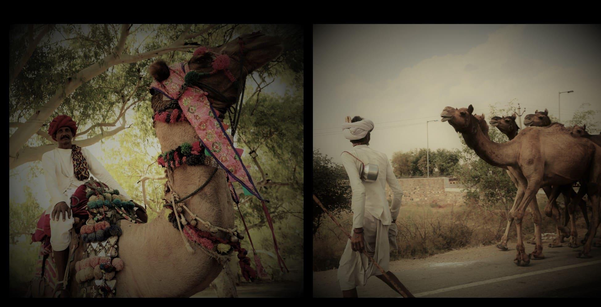 carnet cuir chameau inde