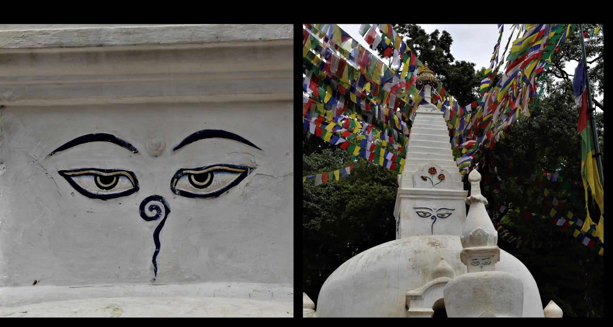 œil de bouddha