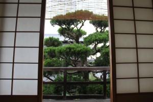 Kyoto (270)