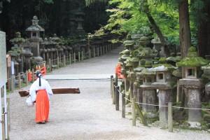 Nara (113)