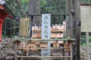Nara (119)
