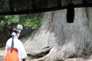 Nara (136)