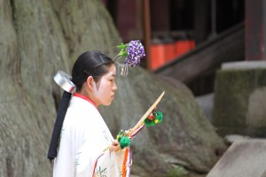 Nara (181)