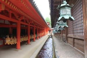 Nara (199)