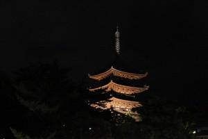 Nara (79)