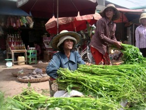 cambodge (284)
