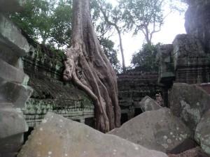 cambodge (427)
